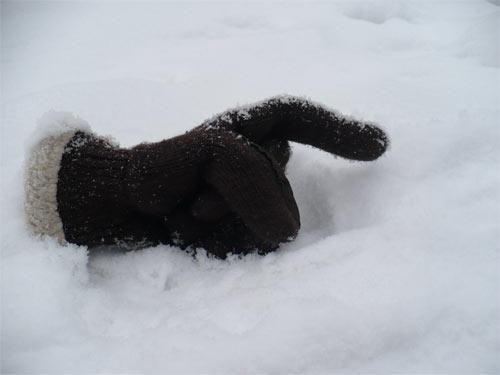 Black Glove in Snow