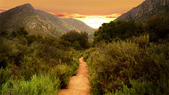 Path at Mission Trails Regional Park