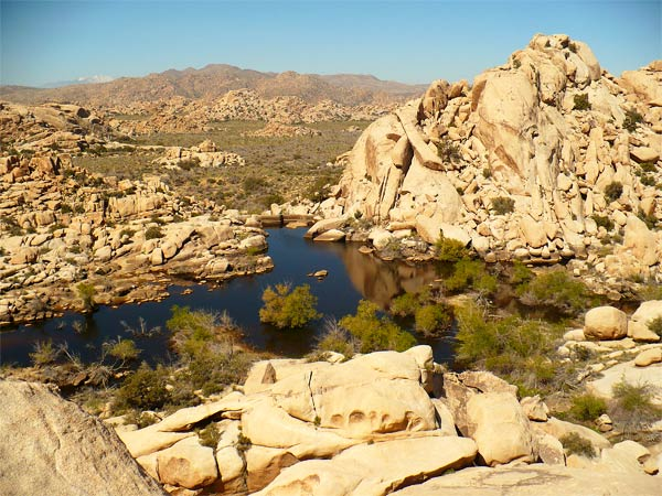 View from top of rock pile at Joshua Tree