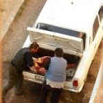 Cow Meat Being Taken From Car Trunk