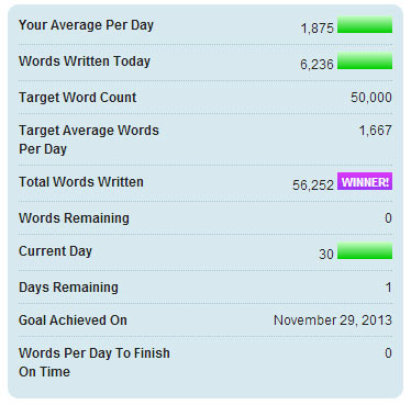 I did it! I pulled ahead and WON! Here are the stats of my progress throughout November.